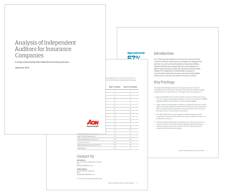 Independent Auditors Analysis
